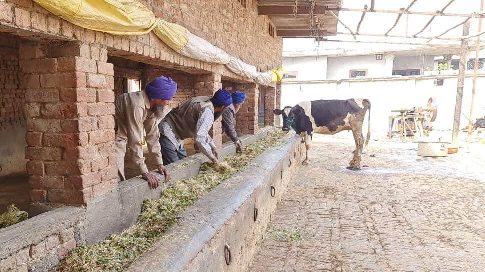Farmers protest, Punjab farmers