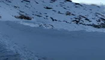 Ladakh avalanche: At least 5 bodies recovered, rescue ops continue