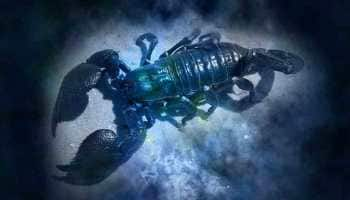Horoscope for February 27 by Astro Sundeep Kochar: Scorpions should drop hints to express feelings