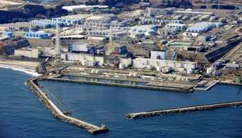 Grave threat to marine life as Japan set to release contaminated Fukushima water into Pacific Ocean