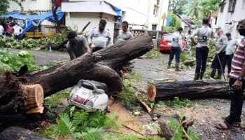 Cyclone Tauktae to weaken into a Depression in next few hours after killing over 29, causing widespread damage
