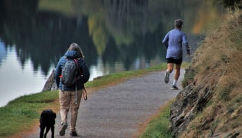 Study suggests exposure to nature during COVID-19 lockdown beneficial for mental health