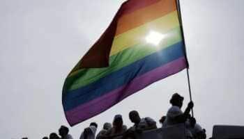 'Milestone for equality': Switzerland gives nod to legalise same-sex marriage