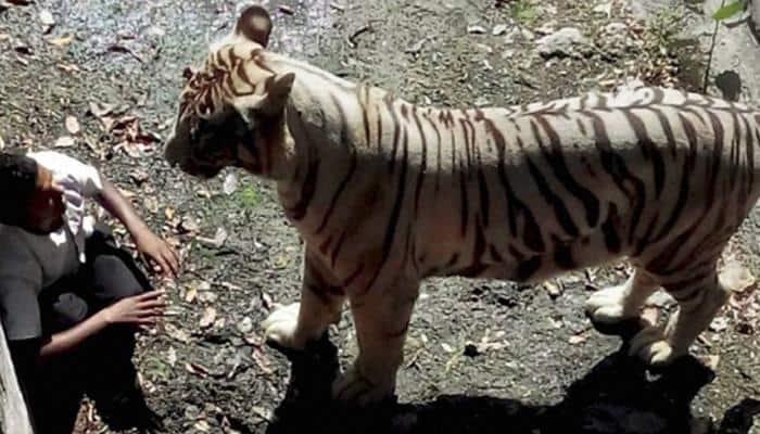National Zoological Park Delhi - Latest News on National