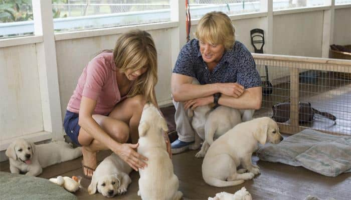 'Marley and Me' sequel on TV soon