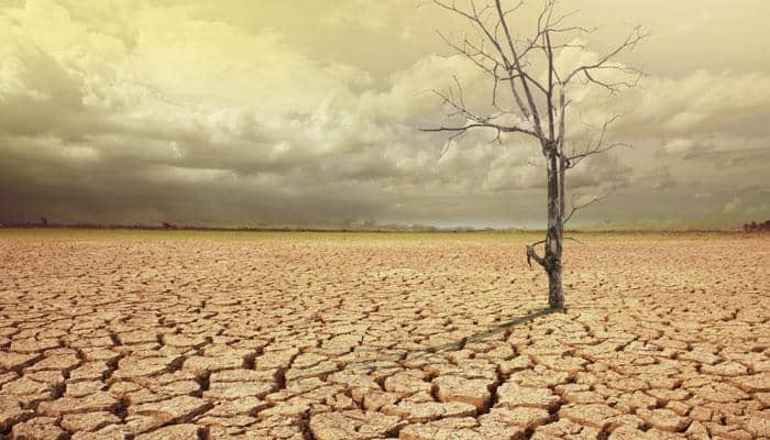 Indianised solutions key to fight climate change: Minister