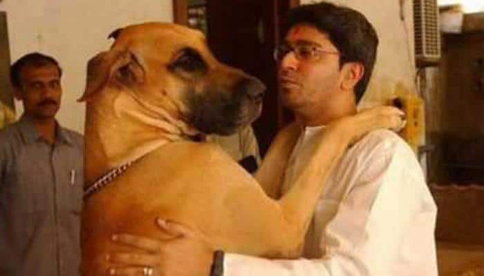 One second of insanity by 'Bond' leaves Raj Thackeray's wife with 65 stitches
