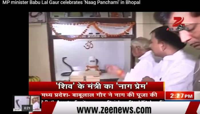 Watch: MP Home Minister Babulal Gaur worships live snakes on Naag Panchami