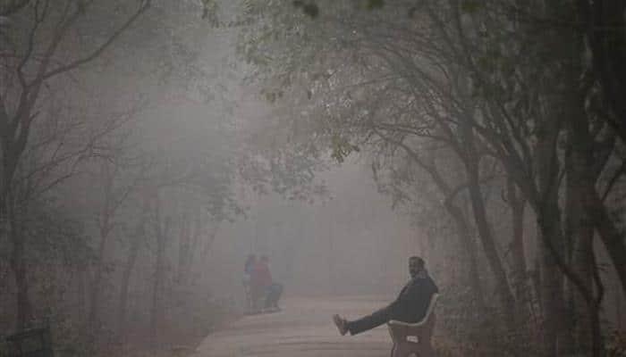 25 degrees in December! Where's the Delhi winter?