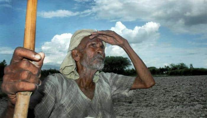 Farmer suicides decline in Yavatmal: Official