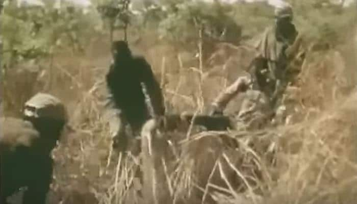 UNBELIEVABLE: How this man uses his leg as bait to catch anaconda will shock you! - WATCH