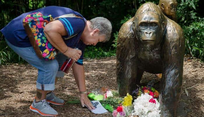 US zoo defends killing gorilla that grabbed boy