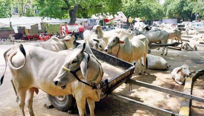 Haryana Police to `smell out` beef in biryani samples from Mewat