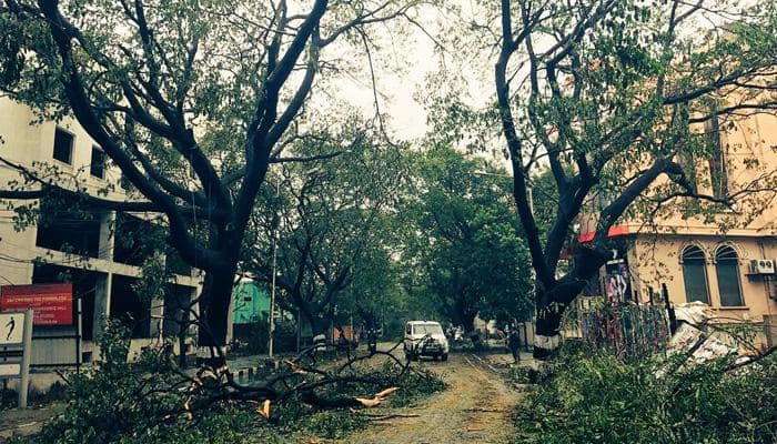 Ten dead, thousands evacuated as cyclone Vardah hits Tamil Nadu; normal life out of gear in Chennai