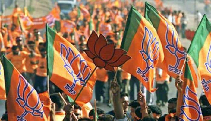 Maharashtra municipal elections results: Big win for BJP in Pune, Latur districts; bags 5 council president seats