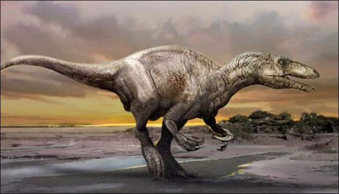 Paleontologists identify 150 dinosaur tracks in Australia!
