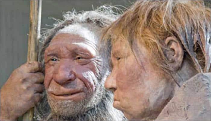 Homo naledi likely lived alongside modern humans: Study