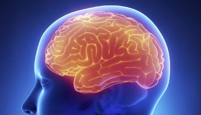 Grey matter density increases during adolescence: Study