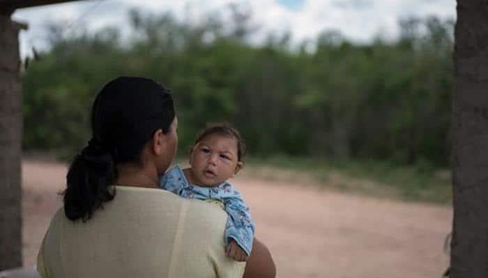 Medical breakthrough: Australian plant extract to eliminate Zika virus discovered!