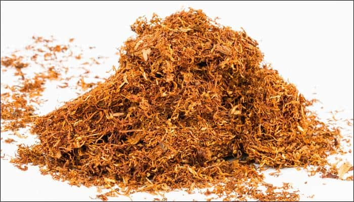 Smokeless tobacco is 95 percent safer than smoking: Study