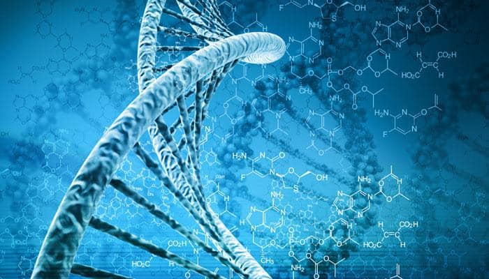 Gene causing arthritis may have helped humans survive Ice Age: Study