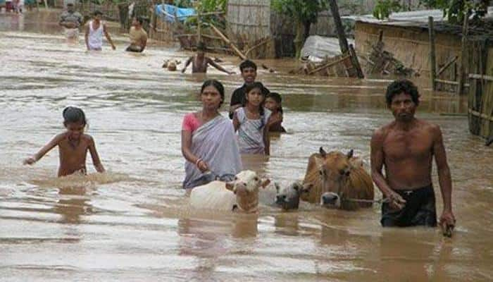 Toll in Assam floods touches 49