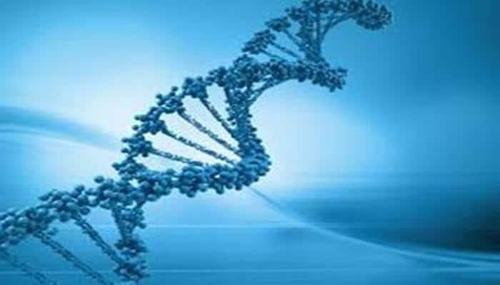 75 per cent of human gene is junk DNA: Study