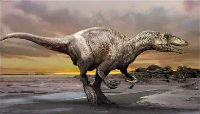 New species of human-sized dinosaur discovered