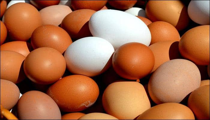 Food safety in India at risk due to egg contamination, says study – Read