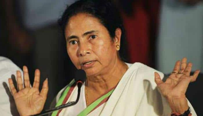 West Bengal govt to move Supreme Court against Calcutta HC's order on Durga idol immersion