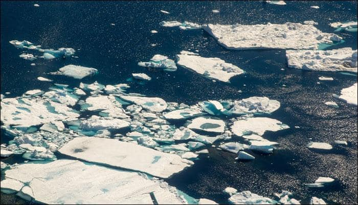 Greenland waters losing salinity due to melting ice, may affect marine life: Scientists