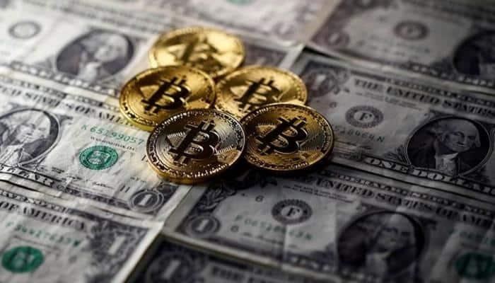 ziua de jumătate de zi bitcoin