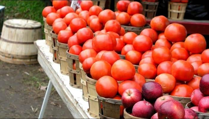 Eating tomatoes, apples may restore lung damage in smokers