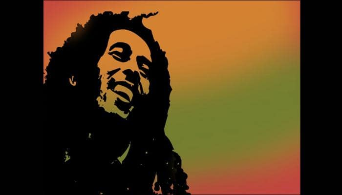 Scientists name new spider species after Bob Marley