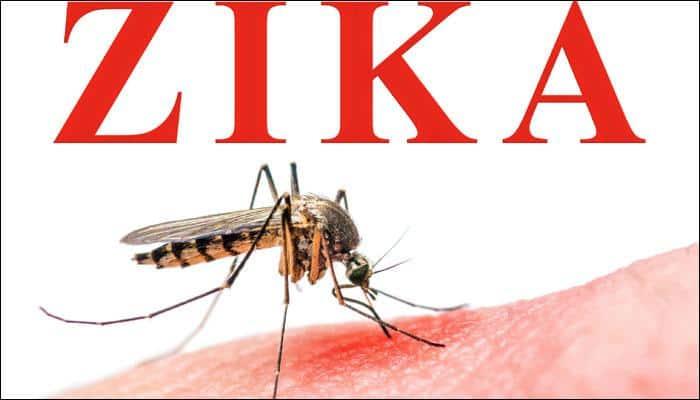 Relatives of Zika virus may cause birth defects