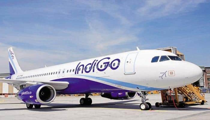 IndiGo flight was full of mosquitoes, crew didn't listen to me, they misbehaved: Passenger