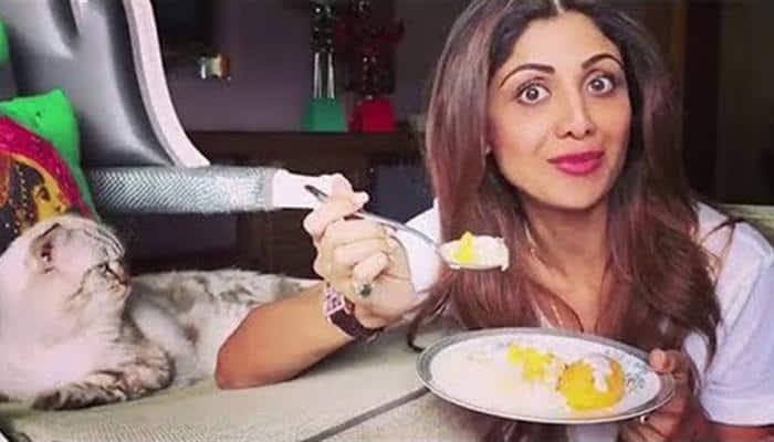 Shilpa Shetty seeks help on social media to find her 'bundle of joy' Simba