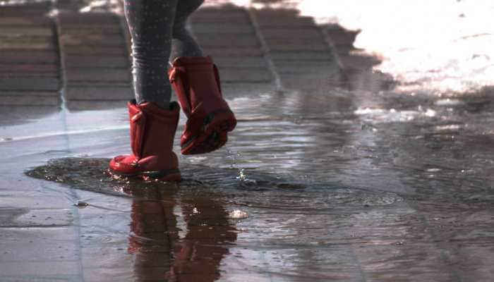 Met department predicts heavy showers to lash north India, coastal regions