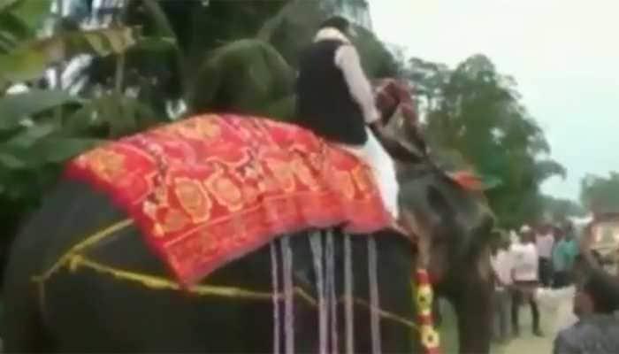 WATCH: BJP MLA falls off elephant in Assam, laughs it off like a sport