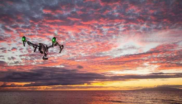 Drones can help find, count marine megafauna: Study