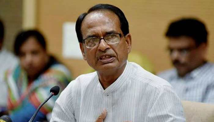 Madhya Pradesh elections 2018 prominent winners and losers