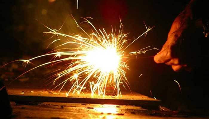 Ensure implementation of SC order on firecrackers on New Year: CPCB to Delhi Police