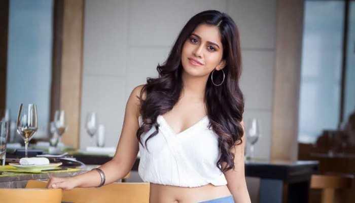 Nabha Natesh roped in for 'iSmart Shankar'