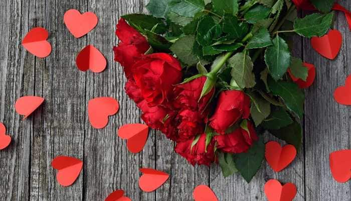 Rose Day 2019: Here's your guide to celebrate the day with your partner!