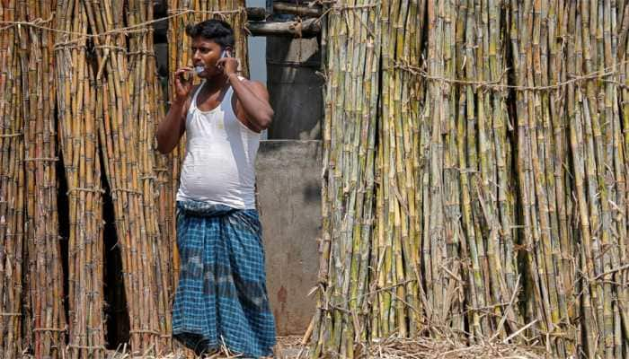 State with highest, lowest production Sugarcane in last four years