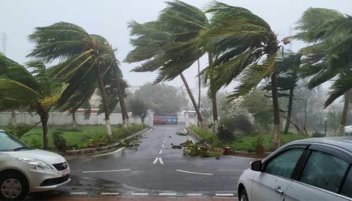 Odisha's five-year plantation drive plan for green cover loss in Cyclone Fani