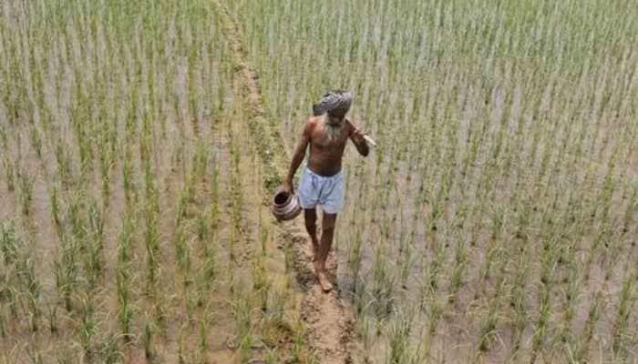 Drought-hit Maharashtra farmers given Rs 4,461 crore: Govt