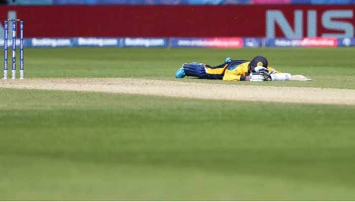 World Cup 2019: Bees attack temporarily interrupt Sri Lanka vs South Africa game
