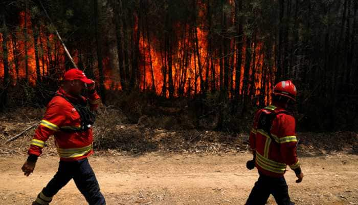 Portugal wildfire under control, firefighters remain on the ground
