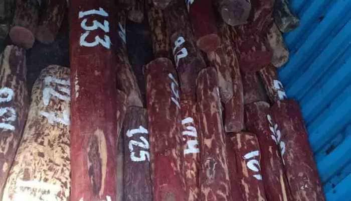 75 kg sandalwood seized, one held at Mumbai airport
